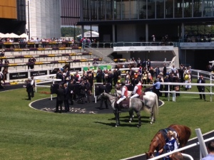 City Tattersalls Cup